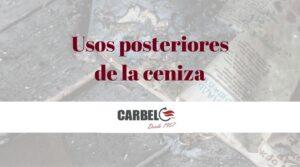 chimeneas-carbel-ceniza
